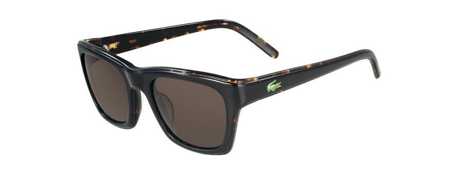 oculos-lacoste-17