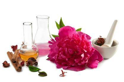 curso de perfume 2