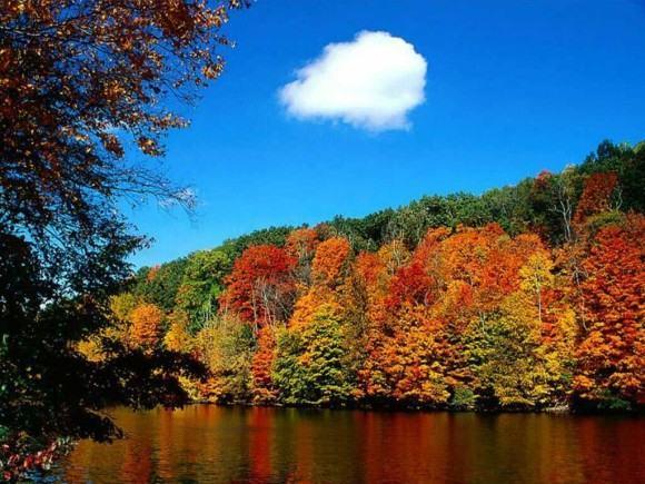 foto paisagem da estação outono